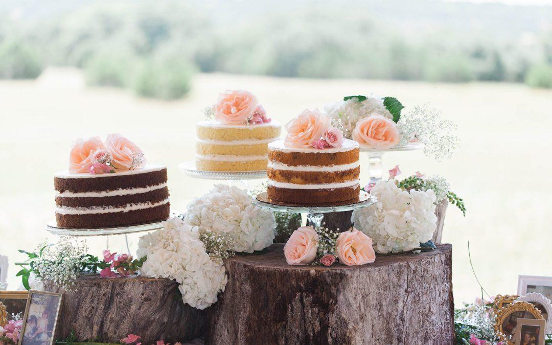 Wisconsin Northwoods Wedding Venue