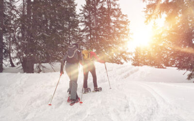 Snowy Family Vacations in Wisconsin: A Winter Wonderland