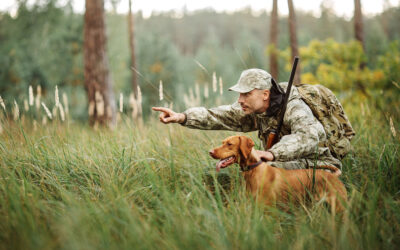 Keeping Your Hunting Dog In-Shape All Year Long